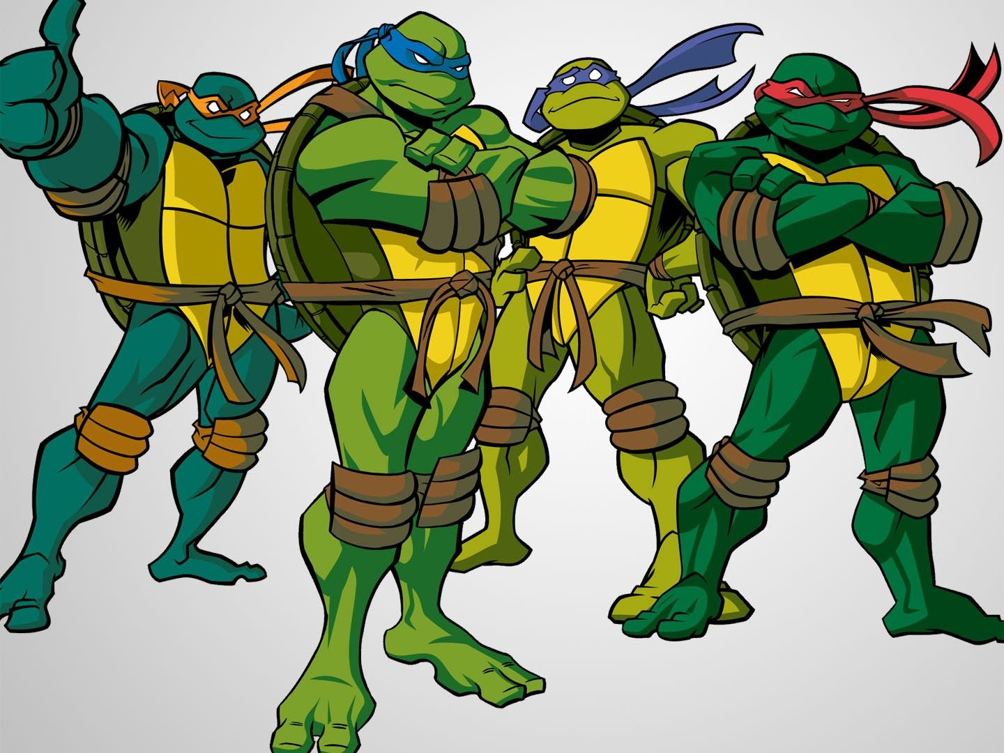 Teenage Mutant Ninja Turtles 2003 | Ninja turtles cartoon, Tmnt, Ninja