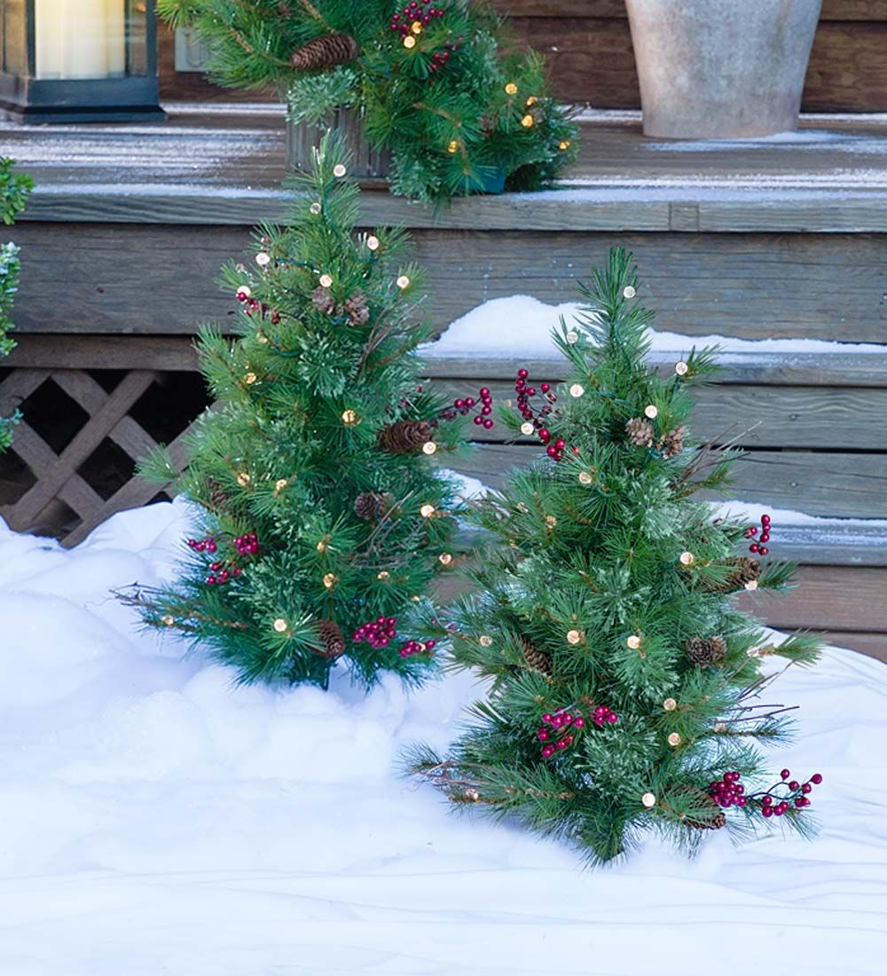 Easy Elegant And Festive Our Pathway Christmas Trees Get A Radiant Twist With Br Outdoor Christmas Lights Christmas Tree Set Decorating With Christmas Lights
