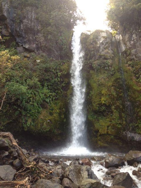 Dawson falls waterfall