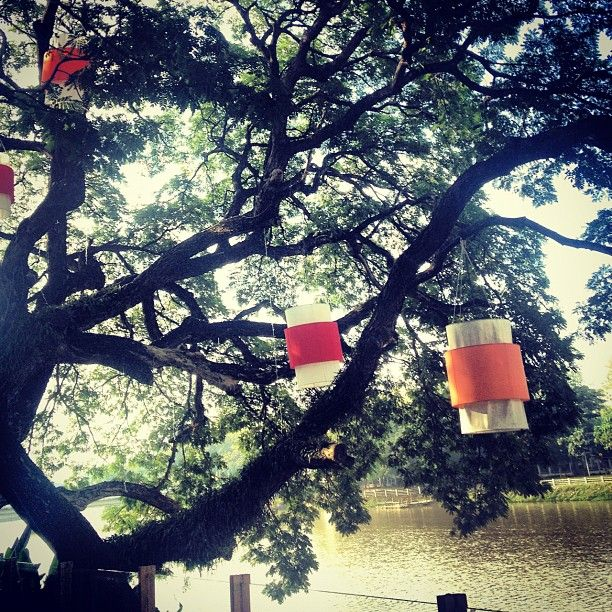 Lanterns and things at Deck1 Restaurant Thank you @bhdiaries for sharing your experience. #thailand #chiangmai