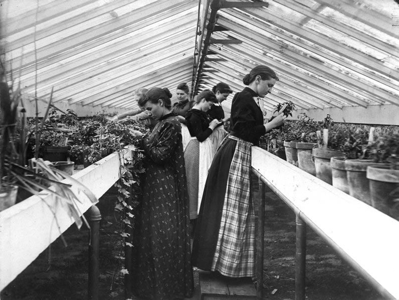 northmagneticpole: Horticulture students in the greenhouse, ca. 1900-Kansas State University Libraries