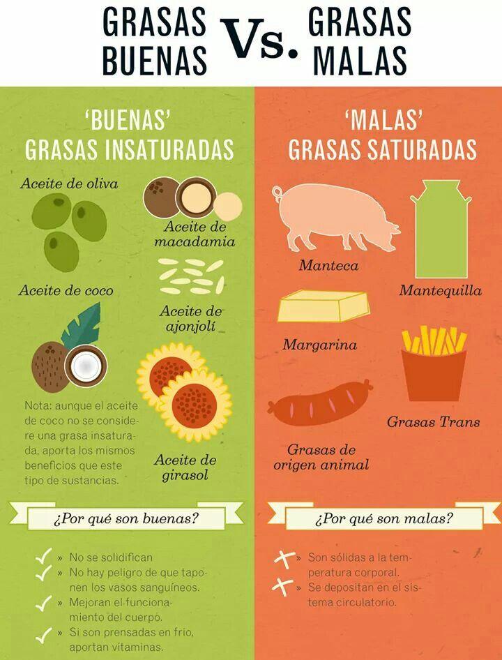 Grasas Buenas Vs Grasas Malas Lipidos O Grasas Lipidos Alimentos Grasas Buenas