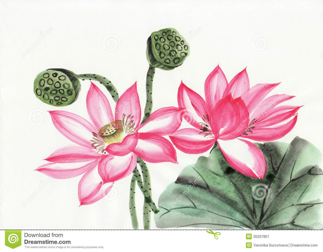 How To Paint Water Lily Leaves With Acrylics