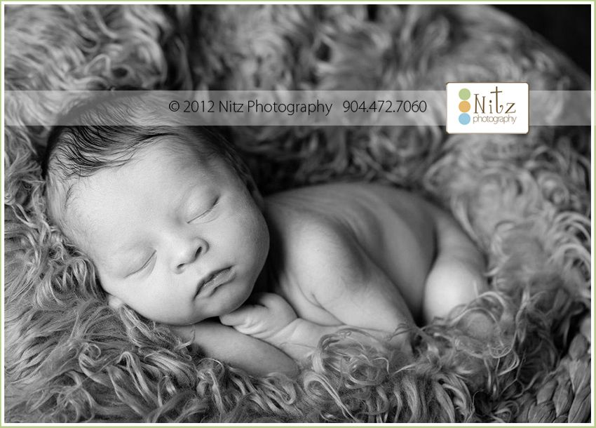 Jacksonville FL newborn baby photographer