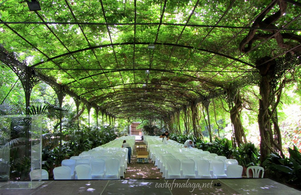 Malaga botanical gardens jard n bot nico hist rico la for Jardin botanico la concepcion