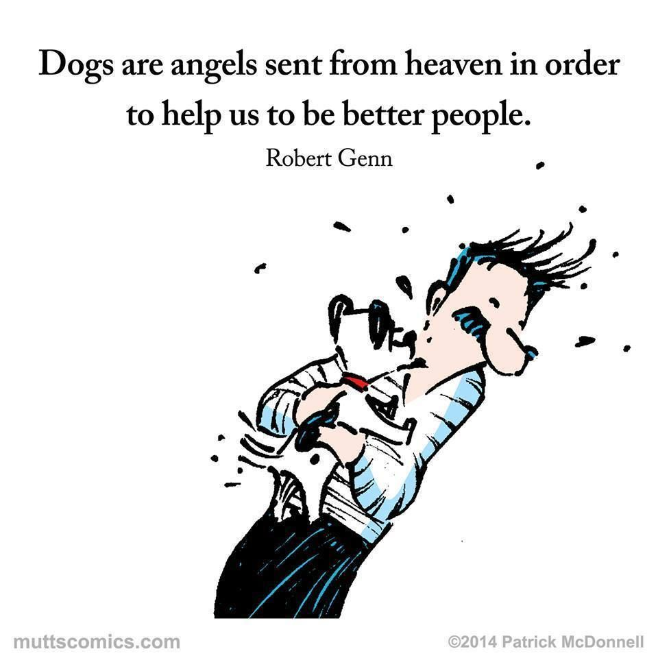 Dogs are angels sent from heaven in order to help us to be better people.