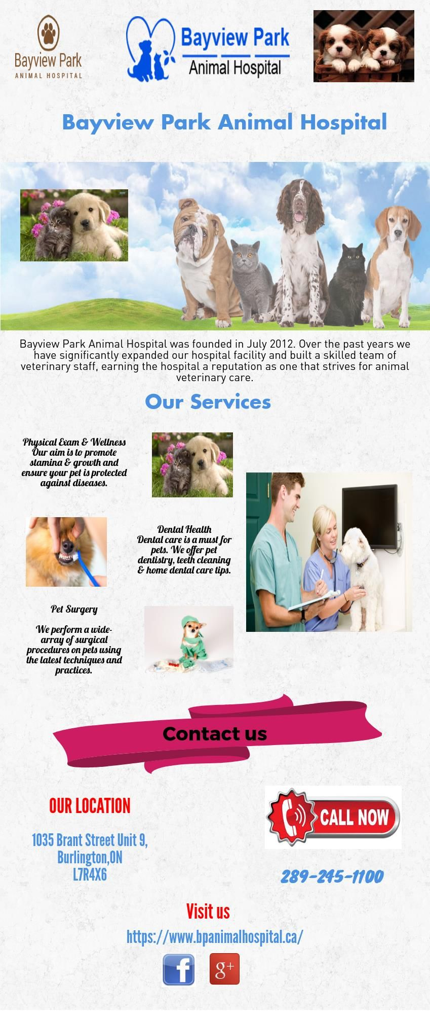 Bayview Park Animal Hospital Is A Full Service Animal Hospital In Burlington Offering Pet Medical Surgical And Den Dog Clinic Pet Health Care Animal Hospital