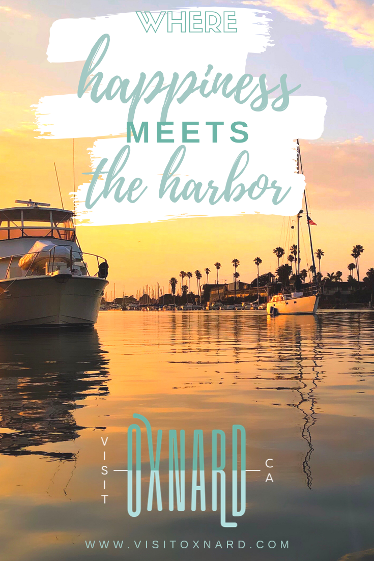 Sail Channel Islands Day Tours Oxnard Ca Top Tips