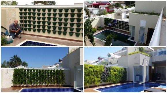 Todo o processo de instalação e plantio do jardim vertical próximo a piscina. Nas fotos abaixo, na direita as espécies da primeira tentativa e na esquerda como está o jardim atualmente.