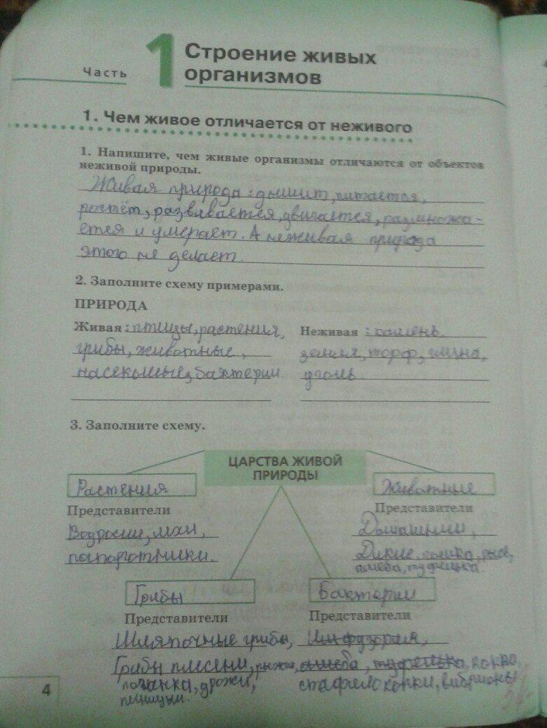 Спиши ру по географии 6 класс определение савельева