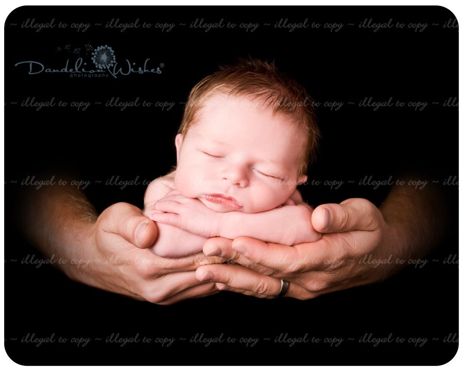 Artistic newborn photography studio serving northern virginia the washington dc area