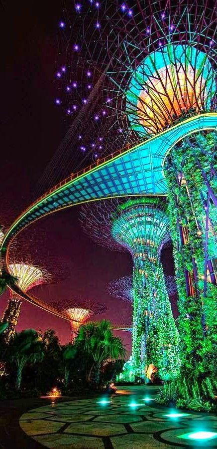 #Gardens_by_the_bay #Singapore http://en.directrooms.com/hotels/subregion/1-10-46/