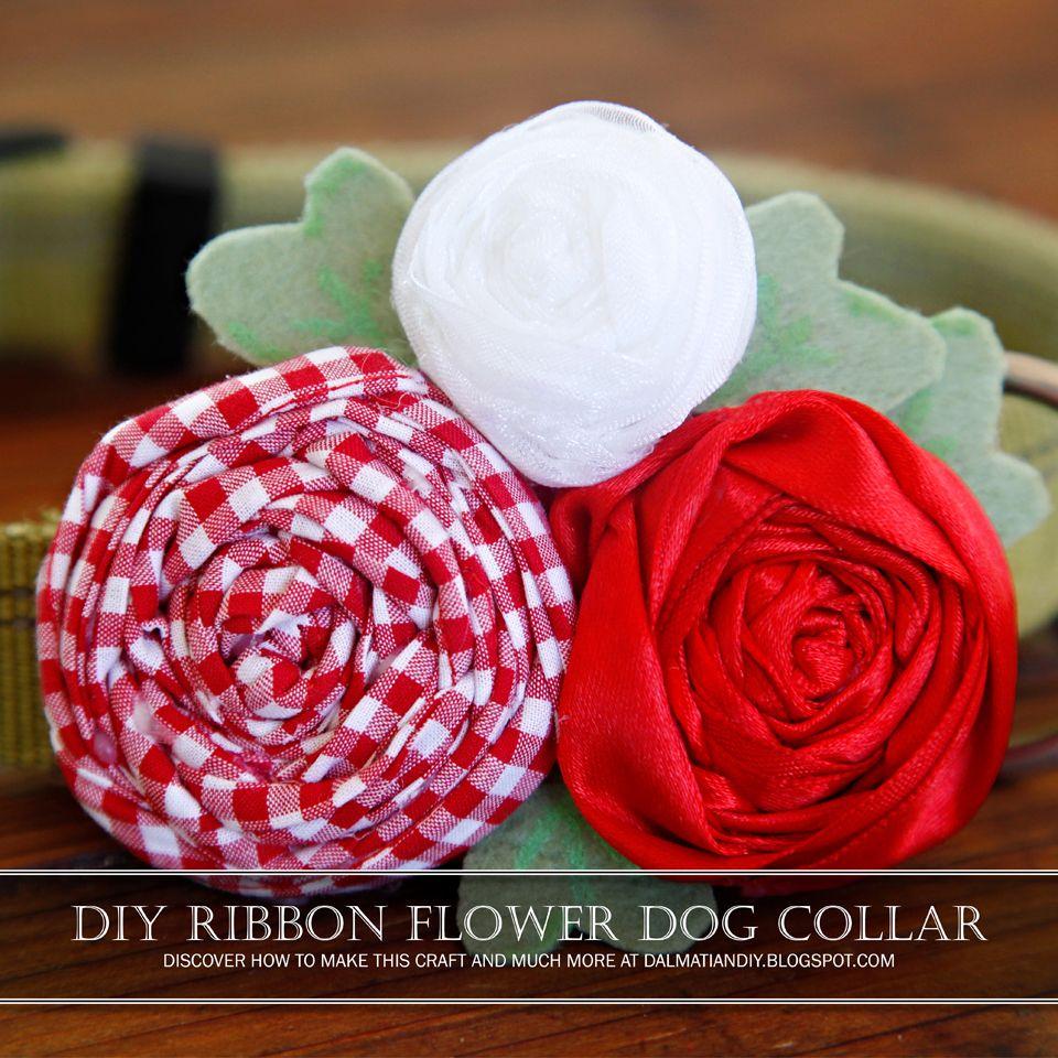 Diy rolled fabric and ribbon rosette dog collar diy dog