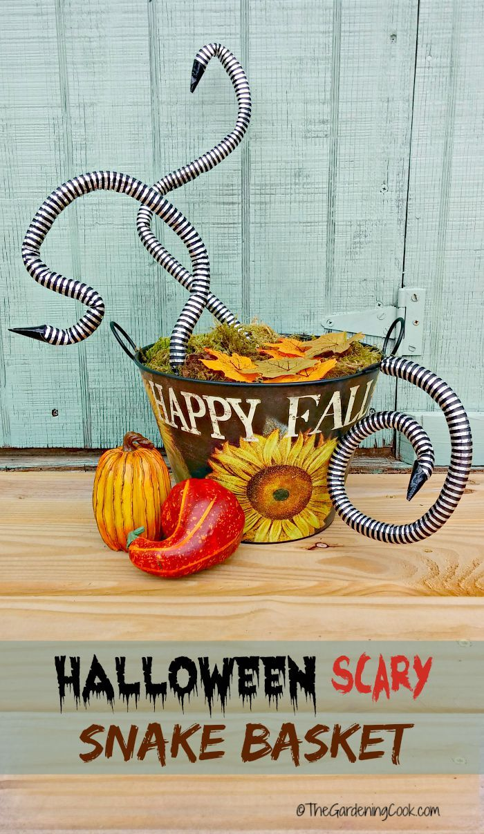 Spooky Halloween Snake Basket - Porch Decoration Featuring Snakes - scary halloween decor