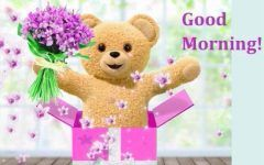 Good Morning Images Teddy Bear 1 Goodmorningimagesnewcom Good