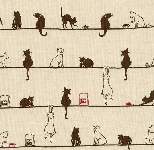 Wallpaper For Home Library Cat Room Office I Would So Do This As