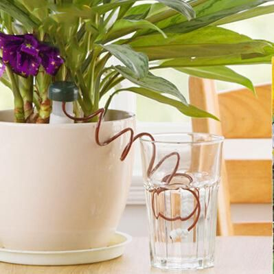 Automatic Plant Watering System Indoor Plant Watering 400 x 300