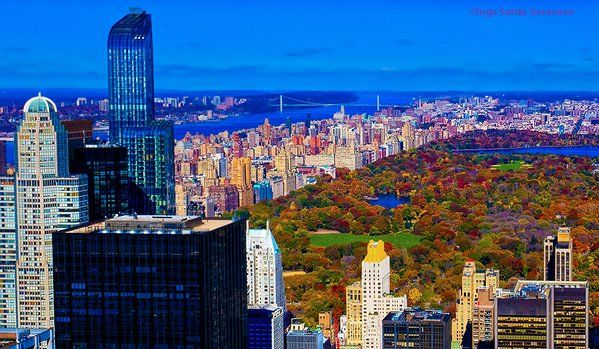 #NYC's Central Park bursting in brilliant autumn colors today. #fallfoliage #NewYork