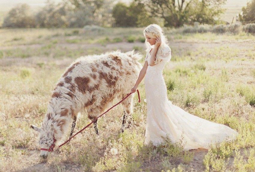 Pritchett Bridal In Orem Modest Wedding Dresses In Utah Horse Wedding Bride Modest Wedding Dresses