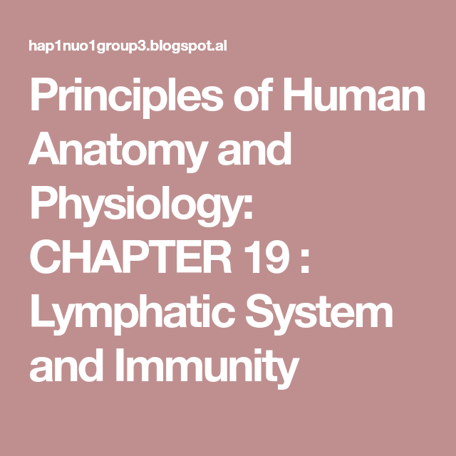 Principles of Human Anatomy and Physiology: CHAPTER 19 : Lymphatic ...