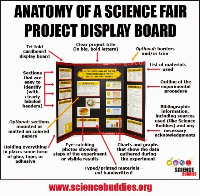 how to do a science fair project display board