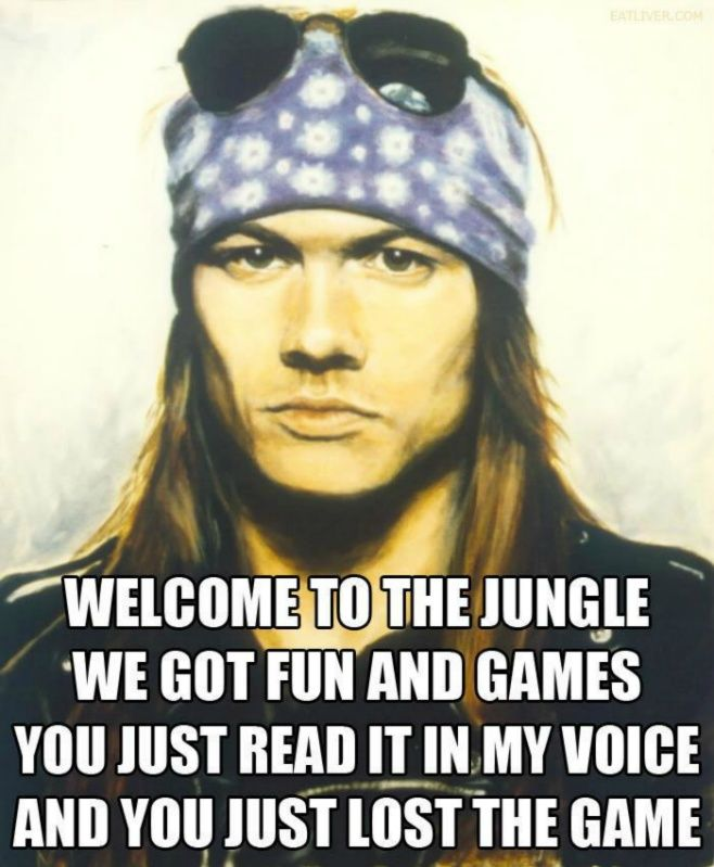 Welcome To The Jungle We Got Fun And Games You Just Read
