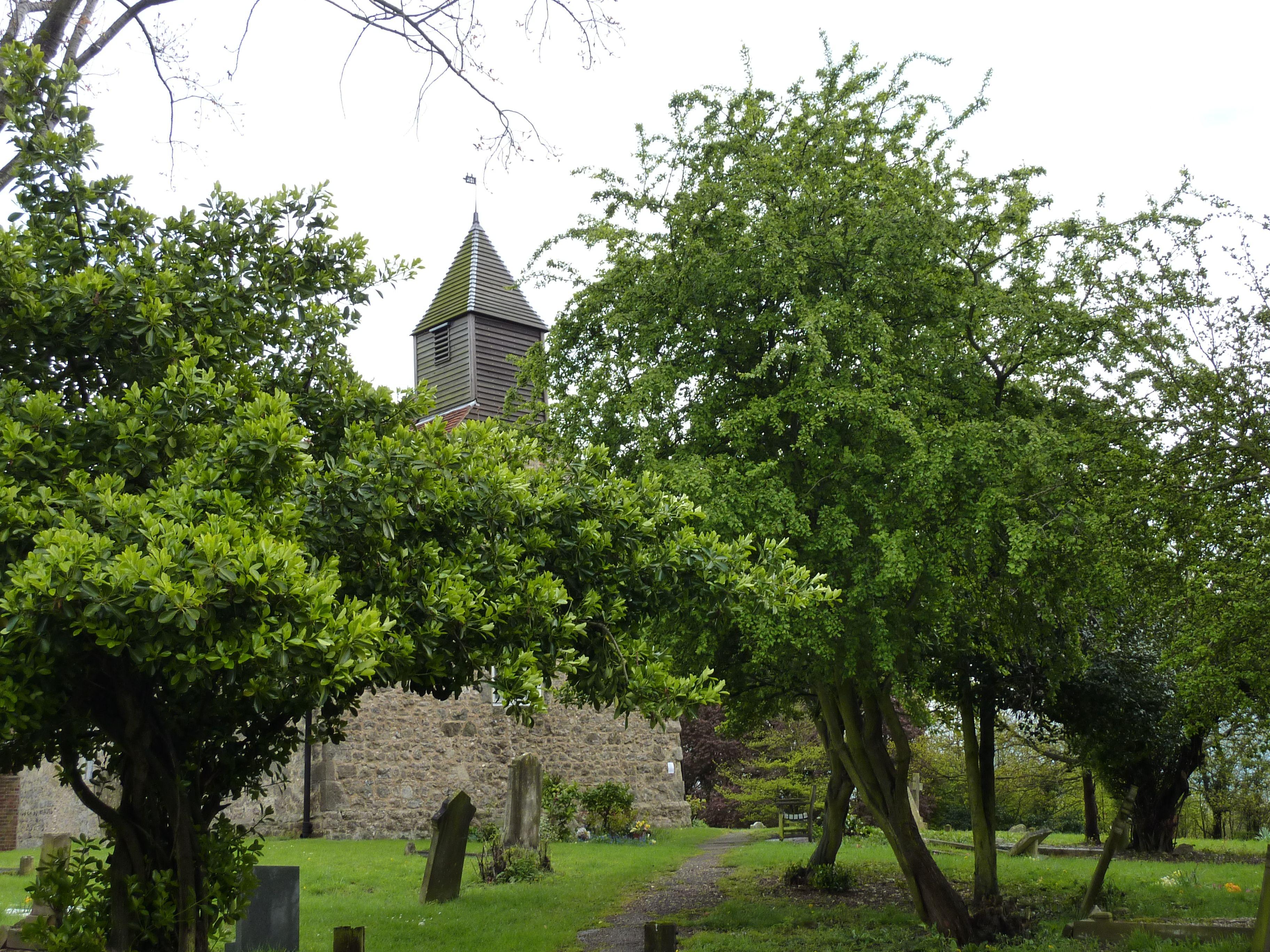 Looking through the trees, All Saints Church (Vange, Essex, England).  Taken: 12/02/2012.