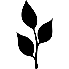 Nature Silhouettes Page 4 Leaf Silhouette Leaf Template Flower Silhouette