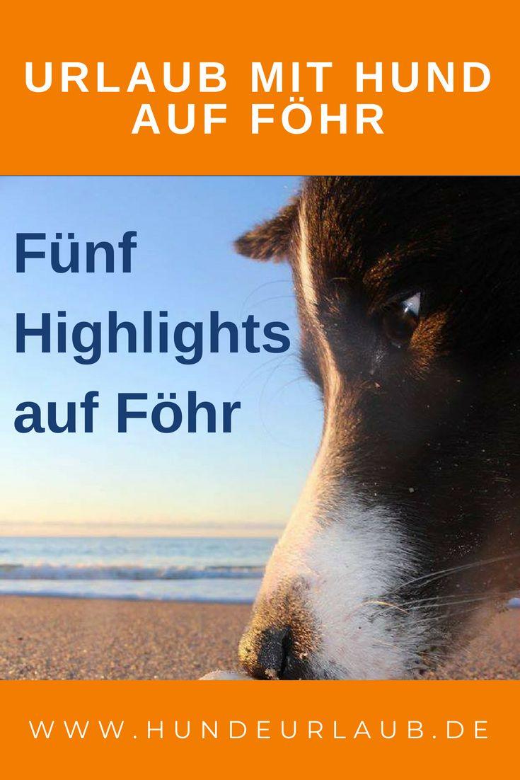 5 Highlights Auf Fohr Lieblingsplatze Zum Entspannen Hundeurlaub De Blog Urlaub Mit Dem Hund In 2020 Urlaub Hunde Urlaub Mit Hund
