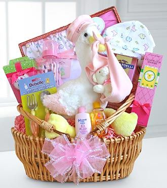Special stork delivery baby girl basket flowers plants and special stork delivery baby girl gift basket welcome a new baby girl into the world and congratulate mom and dad with a special stork delivery baby girl negle Image collections