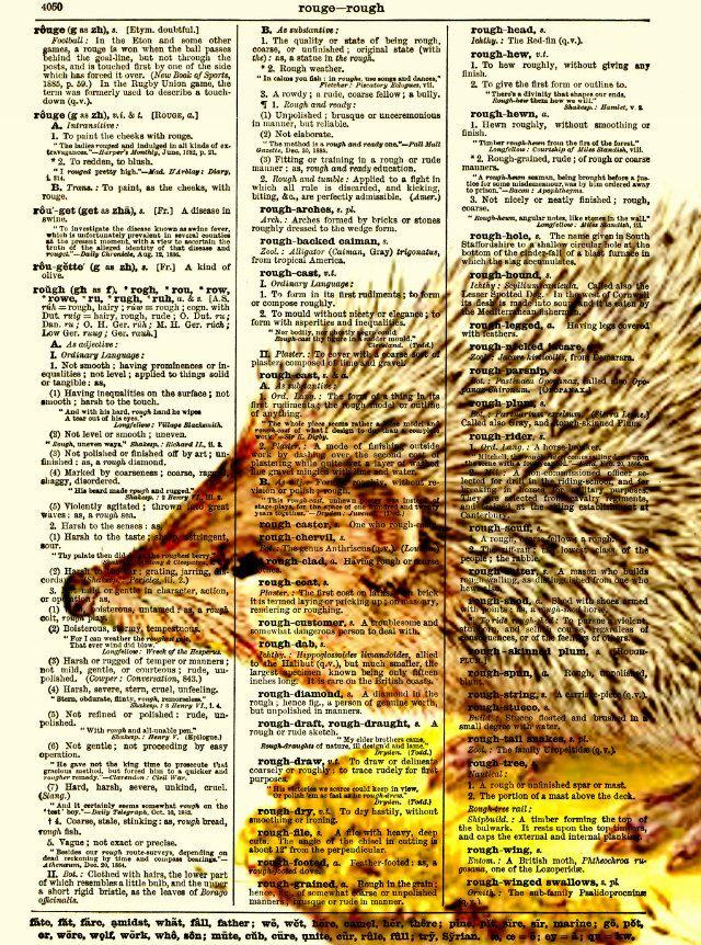 Hedgehog Dictionary Art