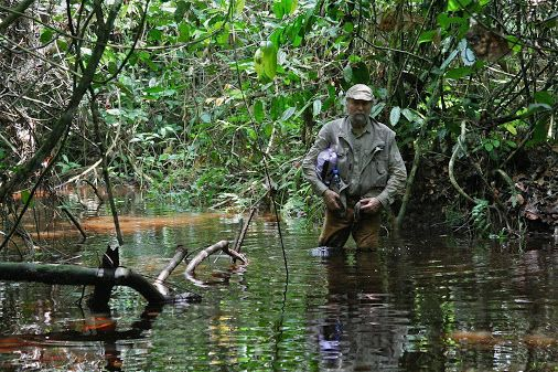 """Cropp: Member of the """"Club of most traveled people"""". Here: In the Congo Basin,…"""