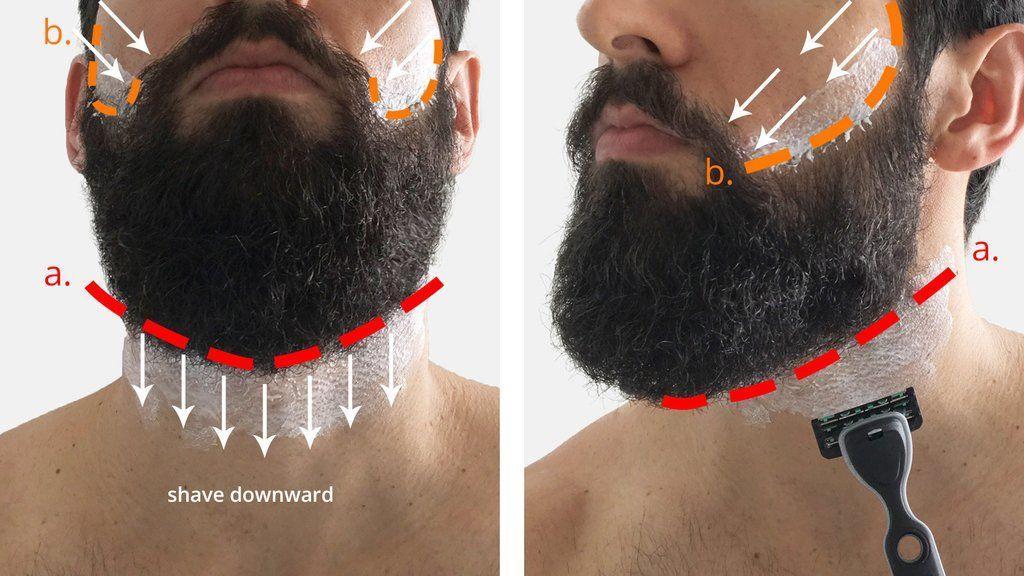 How To Trim Your Beard Neckline BEARD KING in 2020