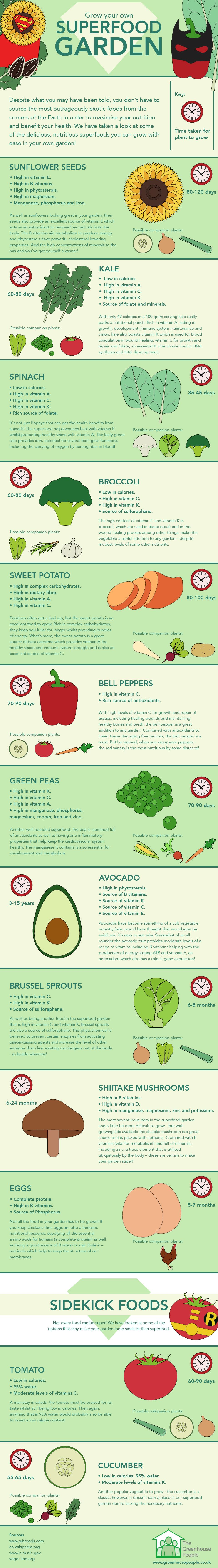 Grow Your Own Superfood Garden #Infographic