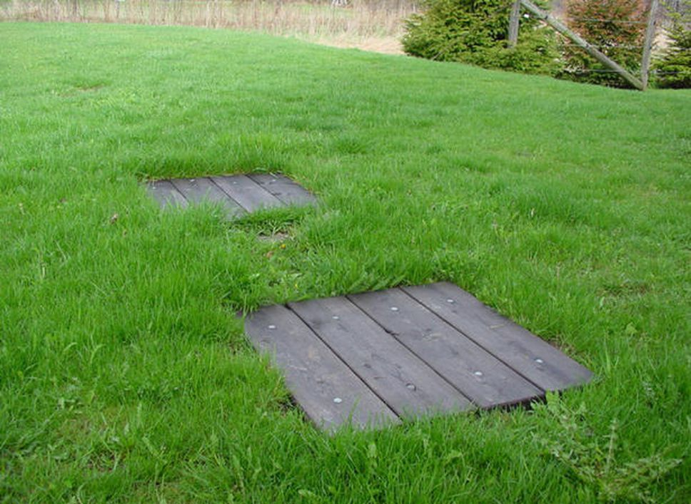 Pin on DIY Garden Projects