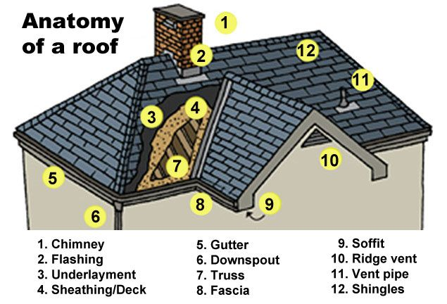 Anatomy Of A Roof Roofing Basics Residential Roofing
