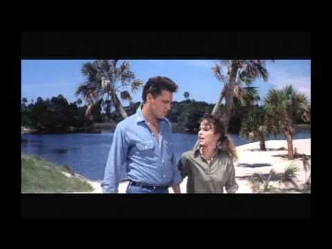 """ELVIS - """"FOLLOW THAT DREAM"""" FILM LOCATIONS - (behind the scenes) / More cool location scenes. This is one of my very favorite movies,for the 1st time he is allowed to show off his 'dead on' comedic talent."""
