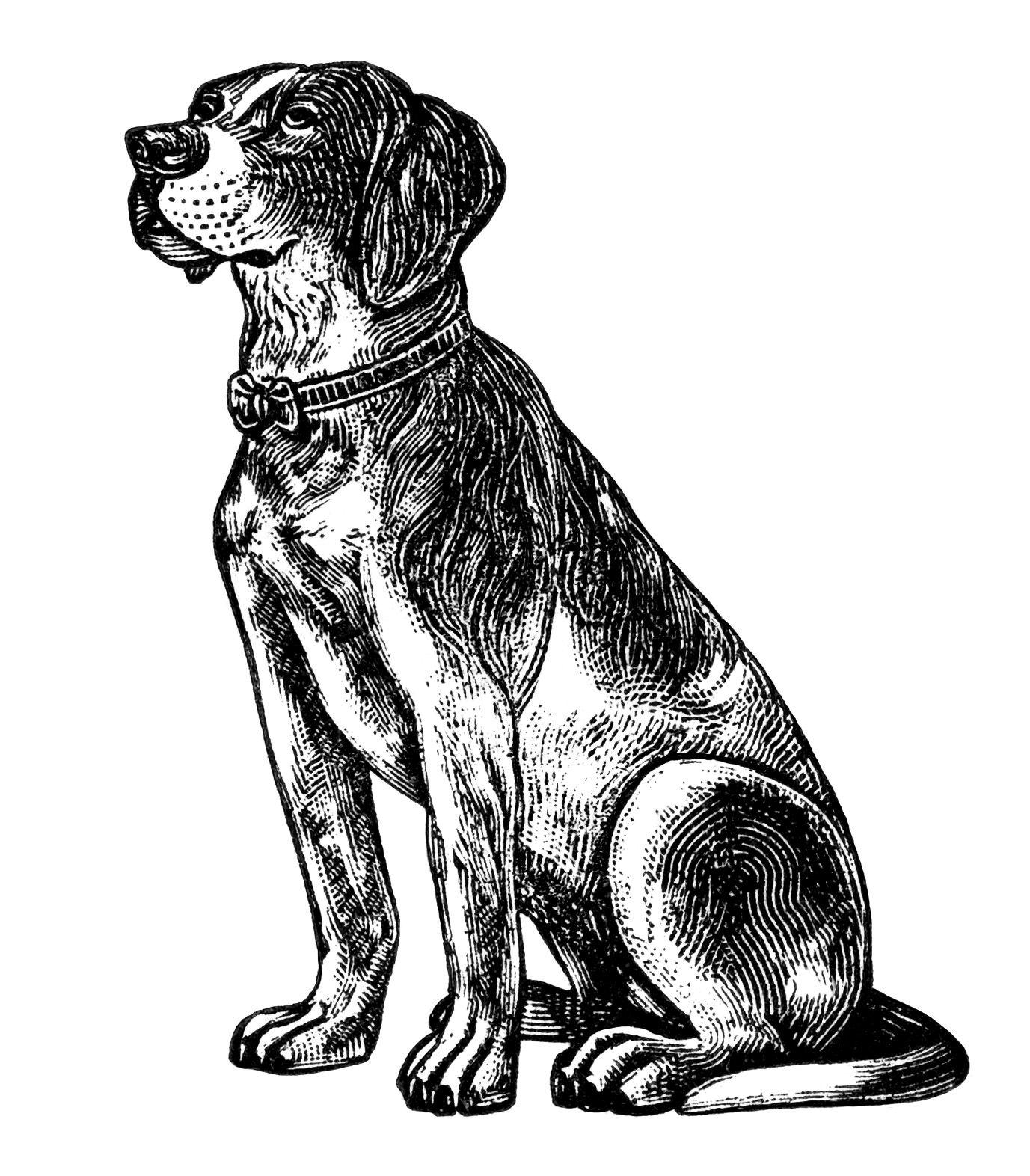 free vintage dog clipart black and white clip art digital pet ima rh pinterest com Dog Silhouette Clip Art free black and white dog and cat clipart