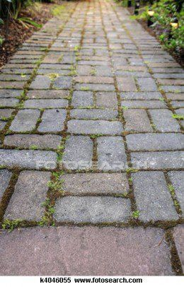 Do it yourself patios how to build an easy low budget patio or brick pavers garden path with moss in landscaping stock photodiy garden paths solutioingenieria Image collections