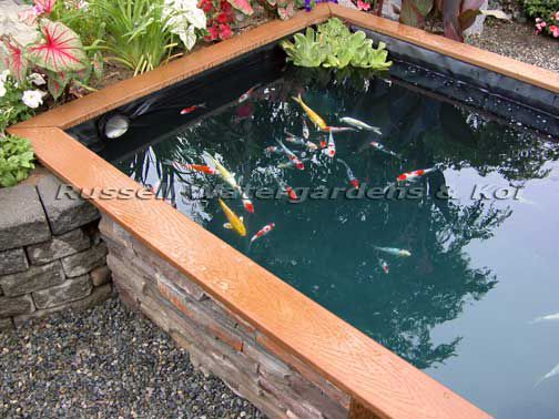 How To Build A Koi Pond Russell Watergardens Koi Pond Pond Water Features Ponds Backyard