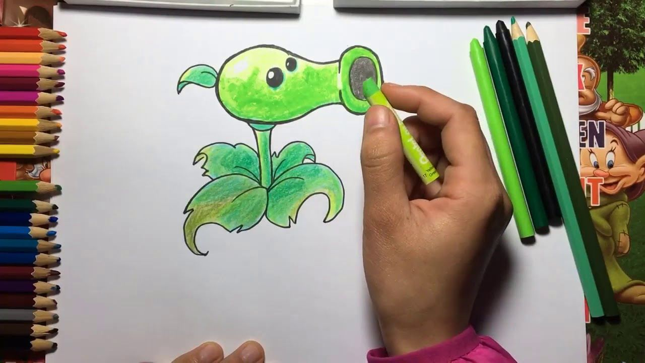 How To Draw A Peashooter Plants vs Zombies for Kids step by step ...