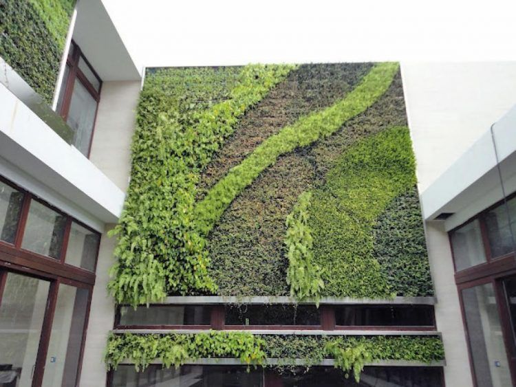 20 Of The Most Beautiful Outdoor Living Wall Ideas | Living walls ...