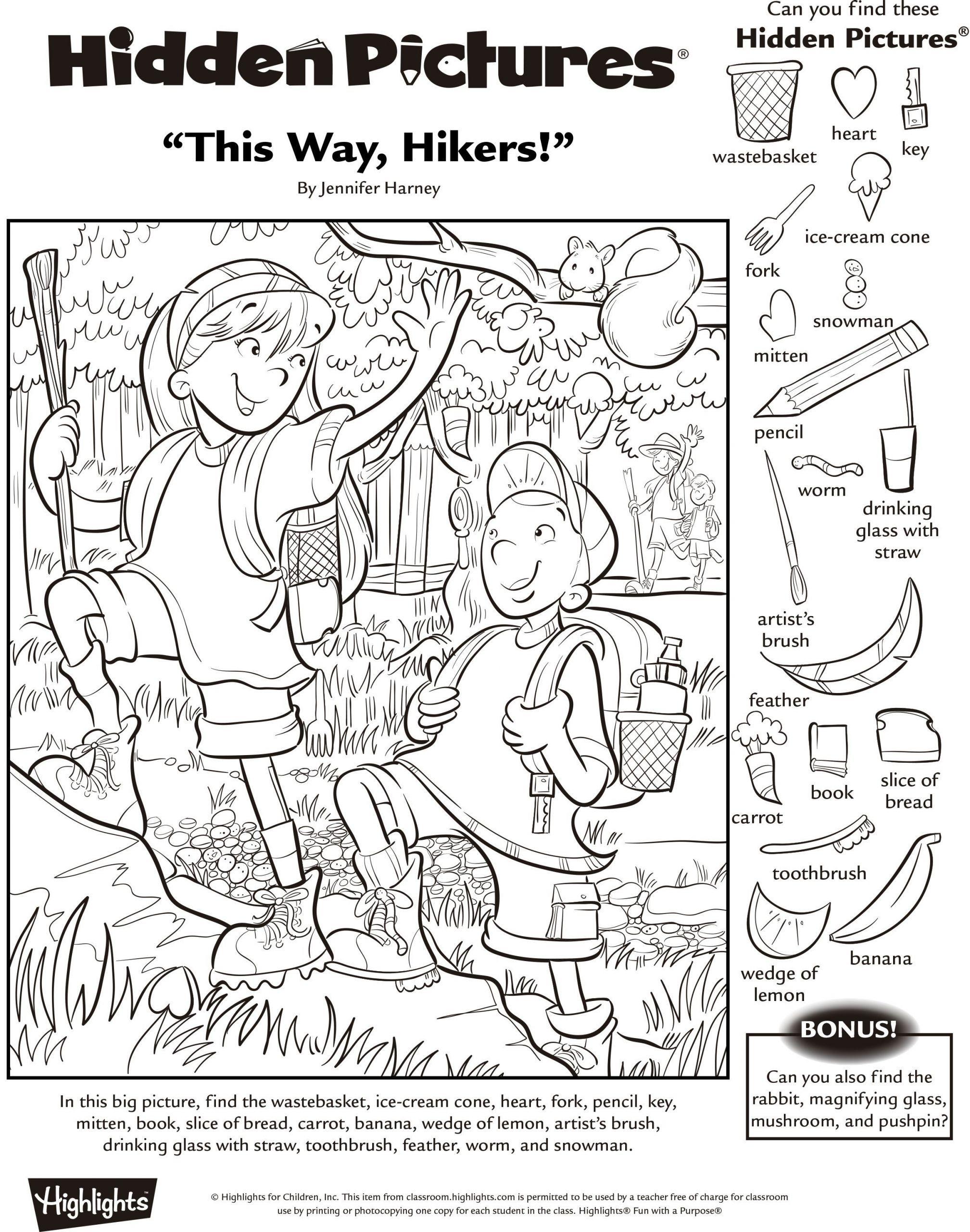3 Hidden Pictures Worksheet Simple 285 Best Hidden