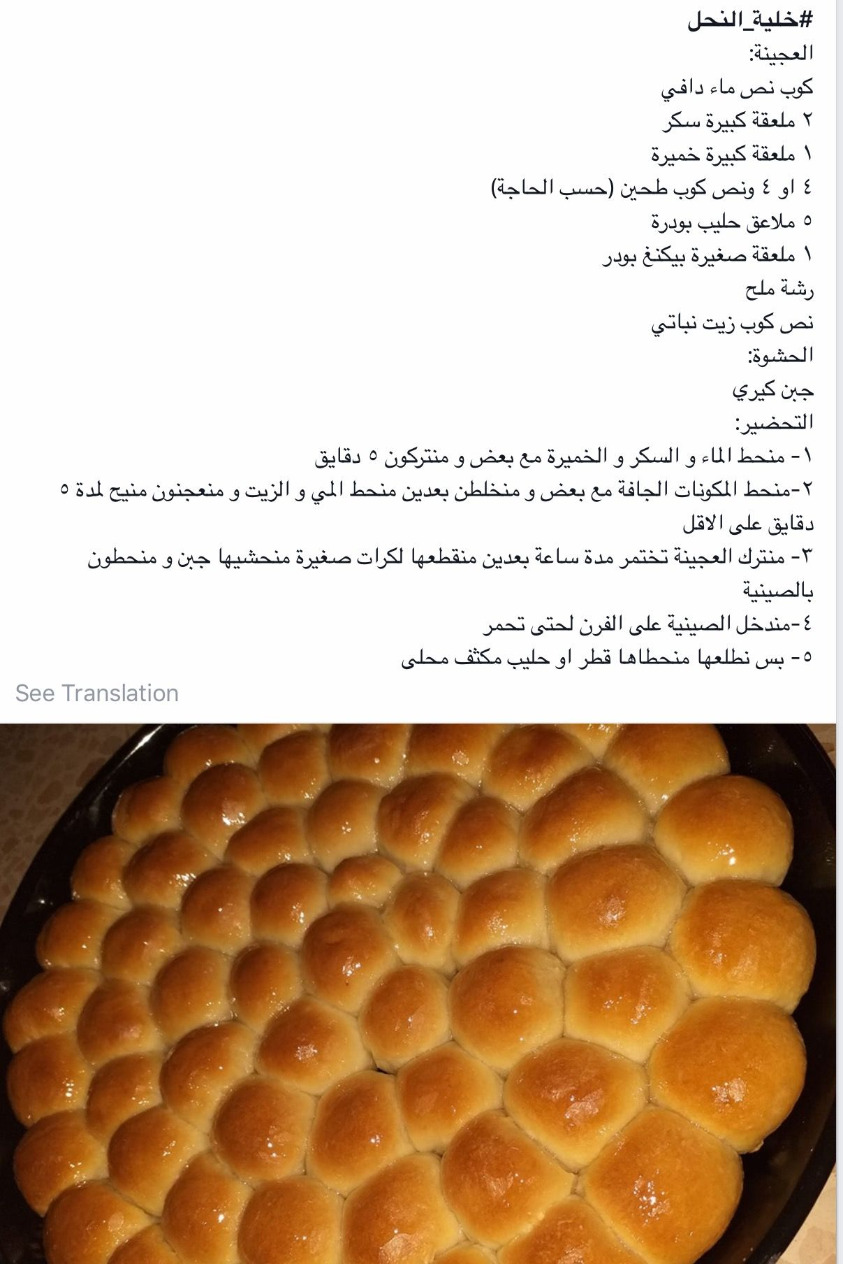 Pin By Lina Atieh On Khalyat El Nahel Food Fruit Cantaloupe