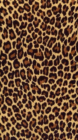 Cute leopard print wallpaper Leopard print wallpaper