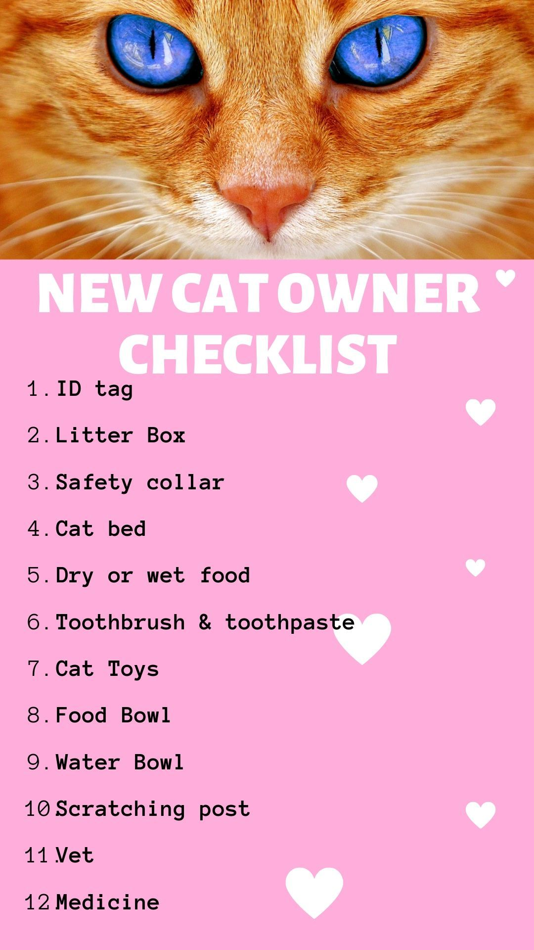 New Cat And Kitten Owner Checklist Kitten Care Cat Owners Cat Essentials