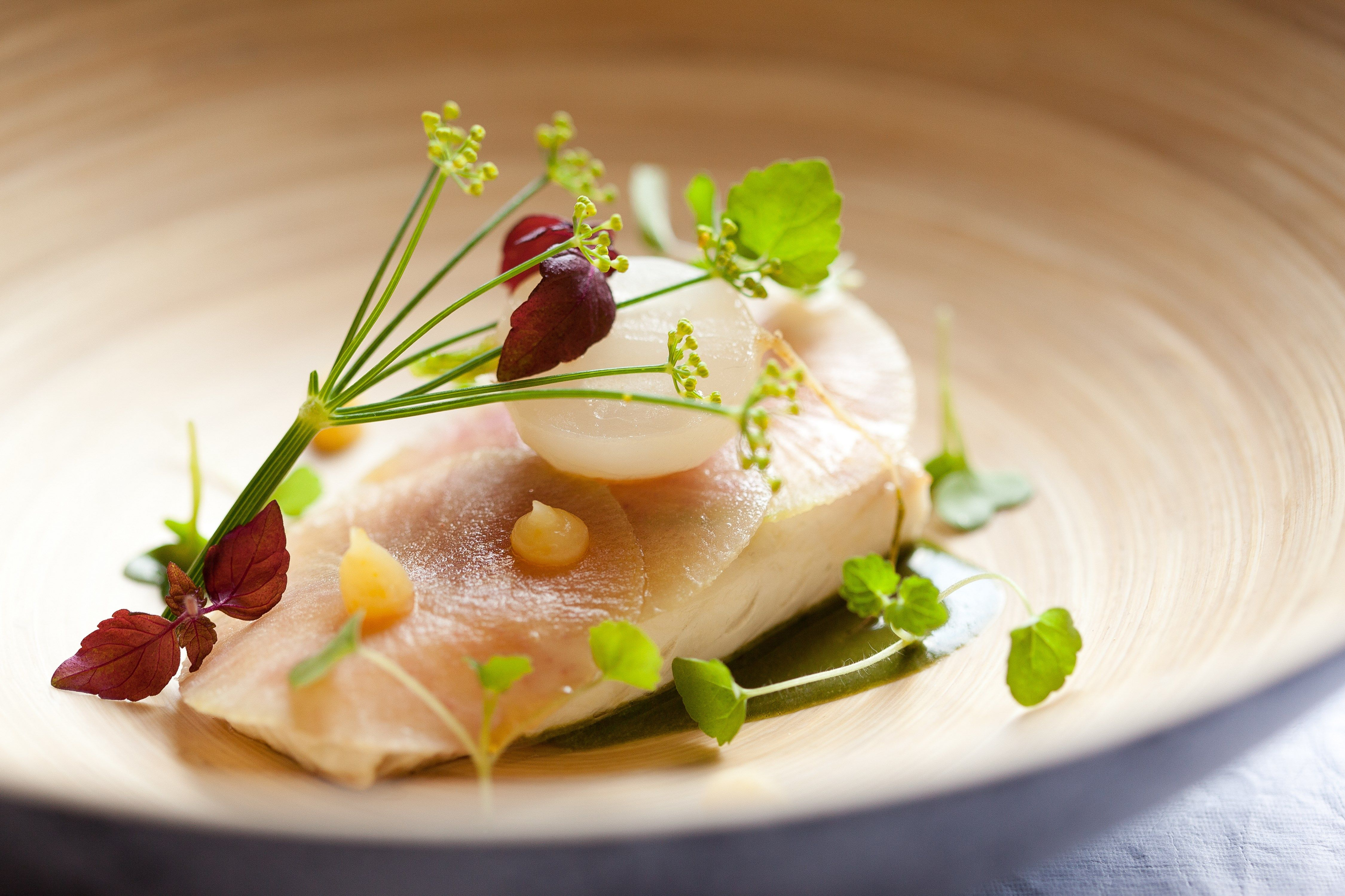 Turbot Navet Infusion D Herbes Sauvages Westminster C Thai Toutain Gastronomie Cuisibe Poisson Luxe Presentation Alimentaire Gastronomie Alimentation