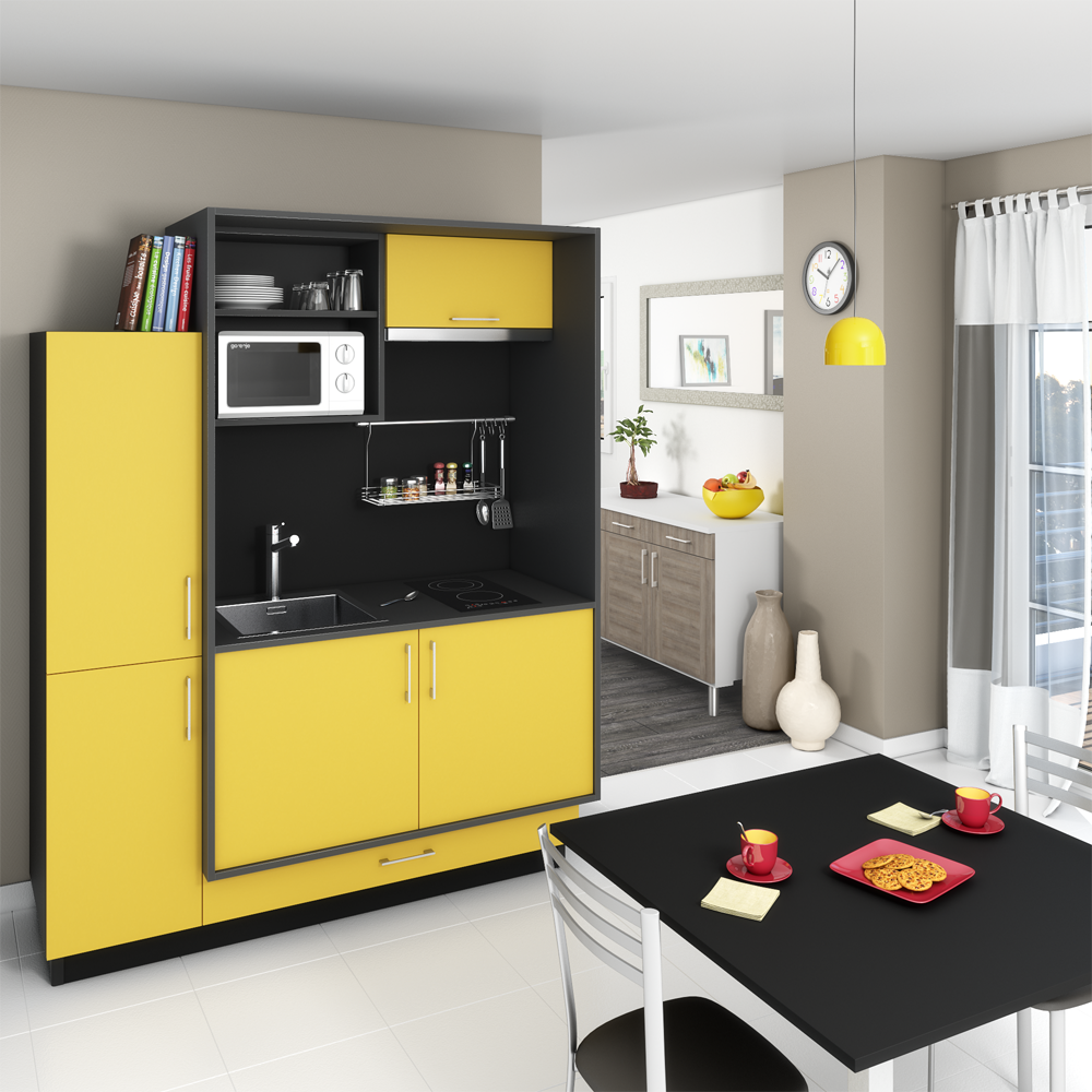 une mini cuisine int grant une plaque de cuisson un vier un emplacement pour le four micro. Black Bedroom Furniture Sets. Home Design Ideas