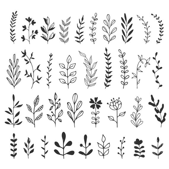 Herbs, branches, flourishes. Svg. DXF. PNG. EPS