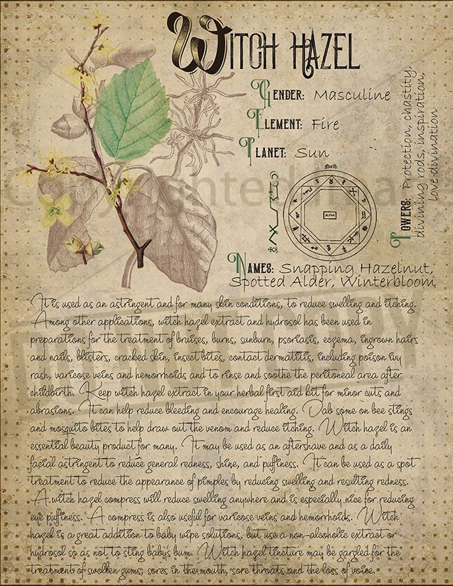 Book of Shadows, Printable pages of Herbs, Witchcr